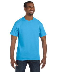 Wholesale Hanes 5250T Men's 6.1 oz. Tagless® T-Shirt - AQUATIC BLUE